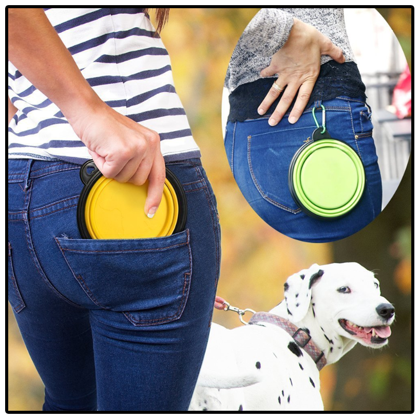 Portable Dog Dish - Important for Dog Hydration