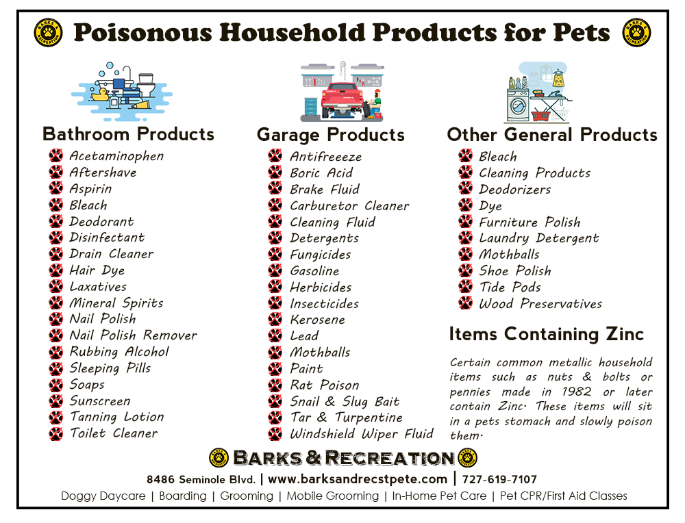 Poisonous Household Items for Pets